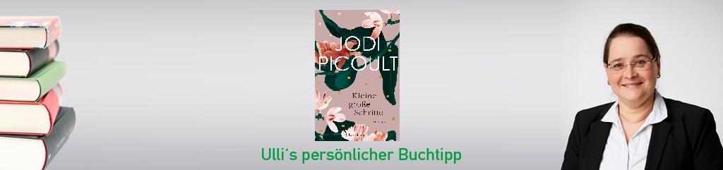 Kleine große Schritte von Jodi Picolt